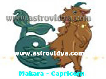 Makara (Capricorn) personality in greater detail