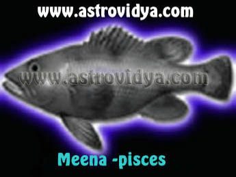 meena (pisces) personality in grater detail